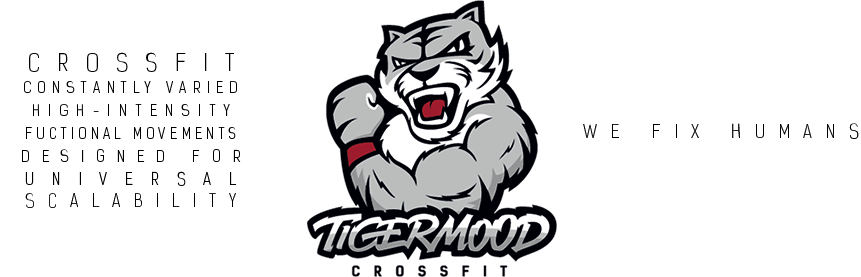 tigermood logo